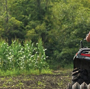 Food Plot Seed Planting Tips & Facts