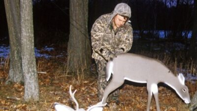 how-to-hunt-with-deer-decoy
