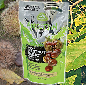 """The """"MAGIC"""" of Chestnuts"""