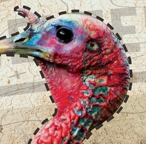 Patterning Your Turkey Gun