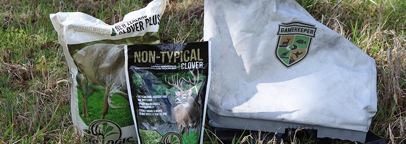 frost-seeding-clover