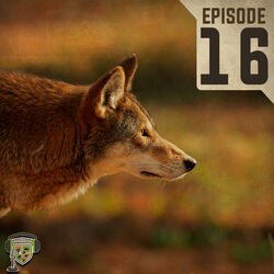 EP:16 | Predator Management Practices and Red Wolves with Dr. Mike Chamberlain