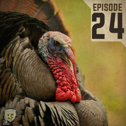 EP:24 | The Challenges of the Amazing Wild Turkey with Dr. Michael Chamberlain
