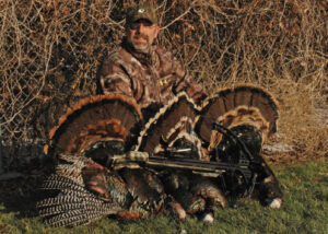 turkey-subspecies-bob-humphrey
