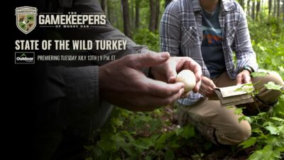 State of The Wild Turkey   The GameKeepers of Mossy Oak