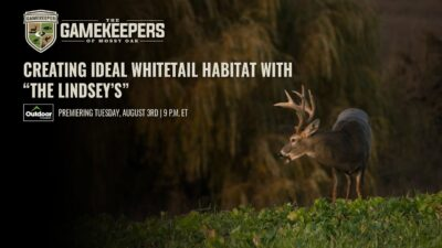 Creating Ideal Whitetail Habitat with The Lindsey's